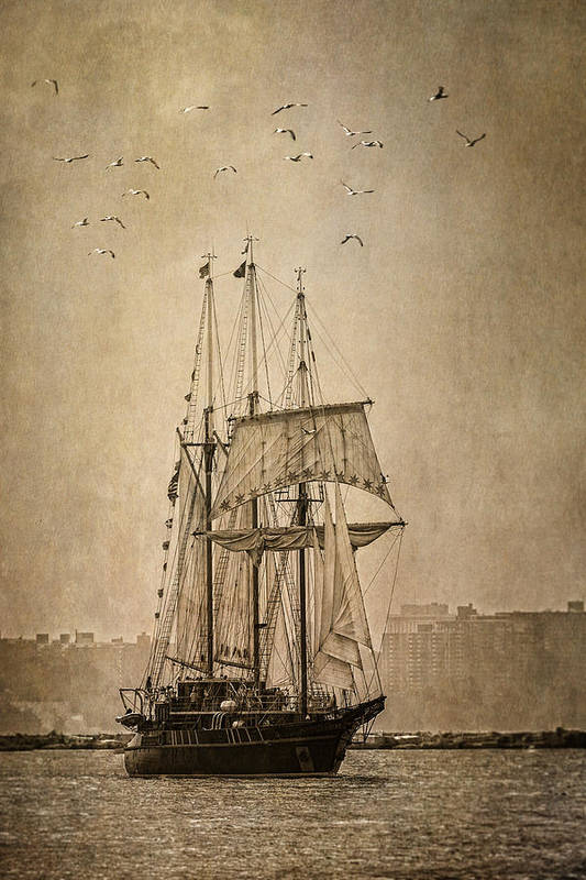 Peacemaker Art Print featuring the photograph The Peacemaker by Dale Kincaid