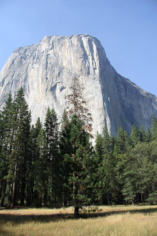 El Capitan Art Print featuring the photograph The Rock Chief by Christiane Schulze Art And Photography