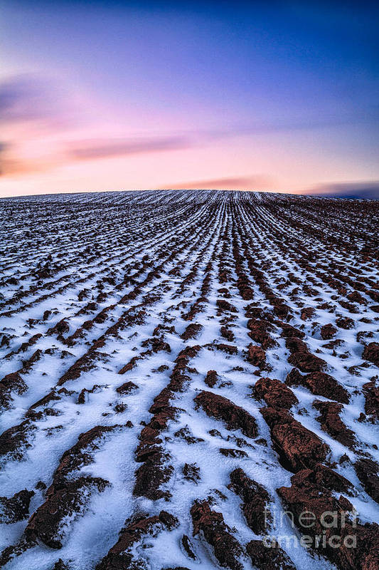 Snow Art Print featuring the photograph To Infinity by John Farnan