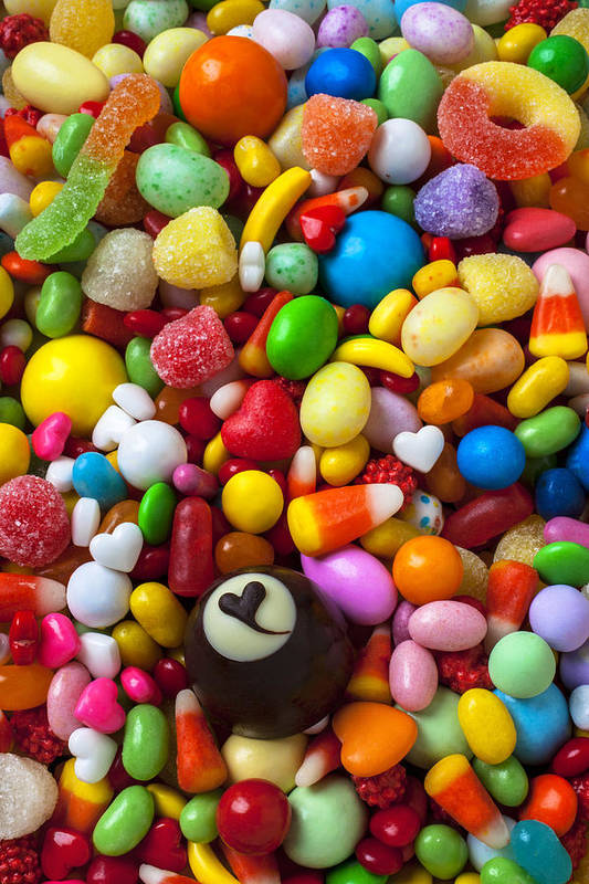 Truffle Art Print featuring the photograph Truffle And Candy by Garry Gay