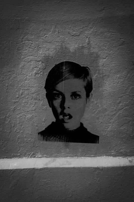 Twiggy Art Print featuring the photograph Twiggy Street Art by Louis Maistros