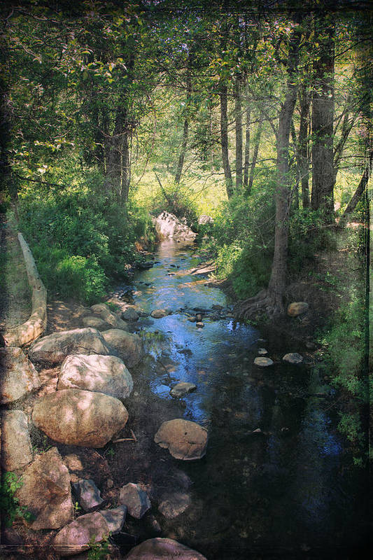 Idyllwild Art Print featuring the photograph Until I Loved You by Laurie Search