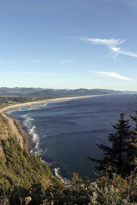 Oregon Coast Art Print featuring the photograph View Point by Chris Anderson