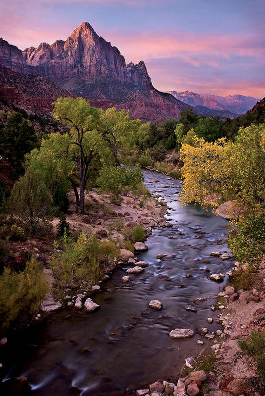 Zion Art Print featuring the photograph Watchman Tower Zion Sunrise by Dave Dilli