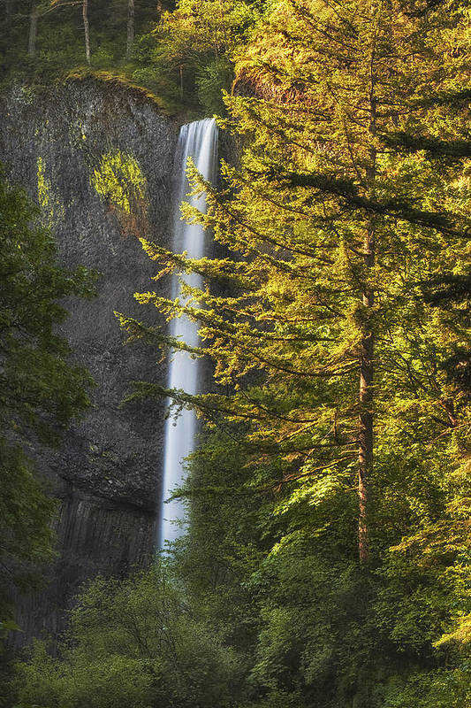 Waterfall Art Print featuring the photograph Waterfall In The Light by Andrew Soundarajan