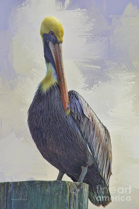 Pelican Art Print featuring the photograph Waterway Pelican by Deborah Benoit