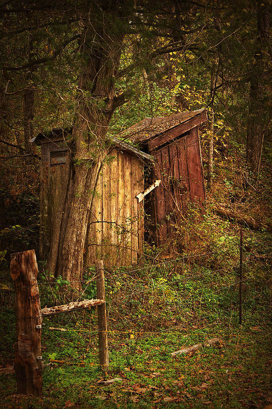 Outhouse Art Print featuring the photograph Which Way To The Outhouse? by Priscilla Burgers