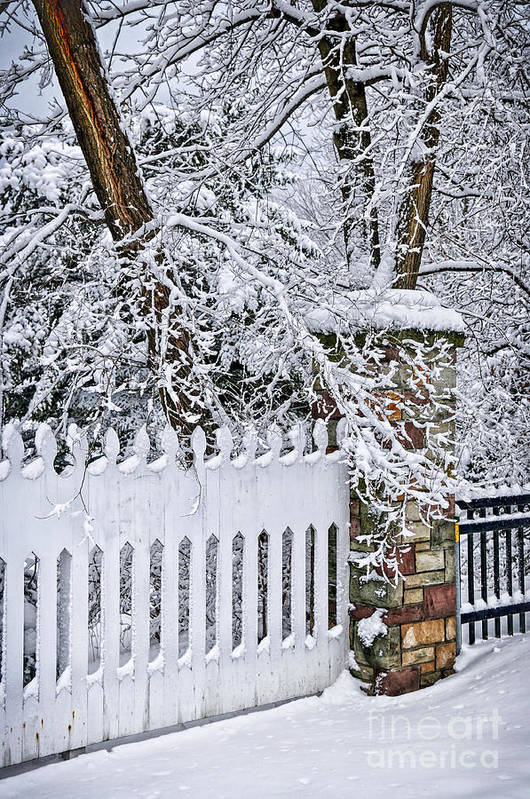 Winter Art Print featuring the photograph Winter Park Fence by Elena Elisseeva