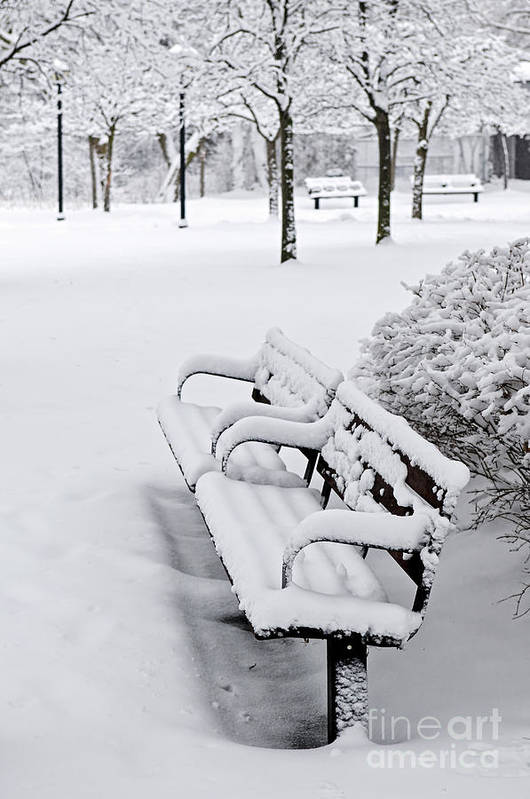 Winter Art Print featuring the photograph Winter Park With Benches by Elena Elisseeva