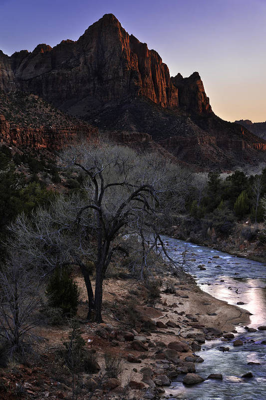 Winter Watchman Art Print featuring the photograph Winter Watchman by Chad Dutson