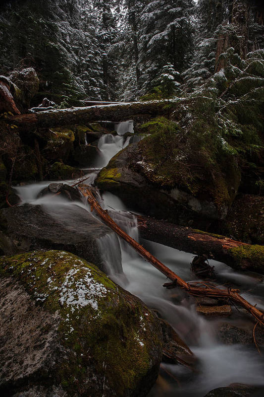 Stream Art Print featuring the photograph Winters Stream Flow by Mike Reid