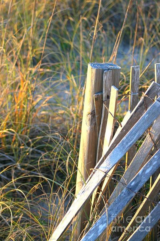 Post Art Print featuring the photograph Wooden Post And Fence At The Beach by Nadine Rippelmeyer