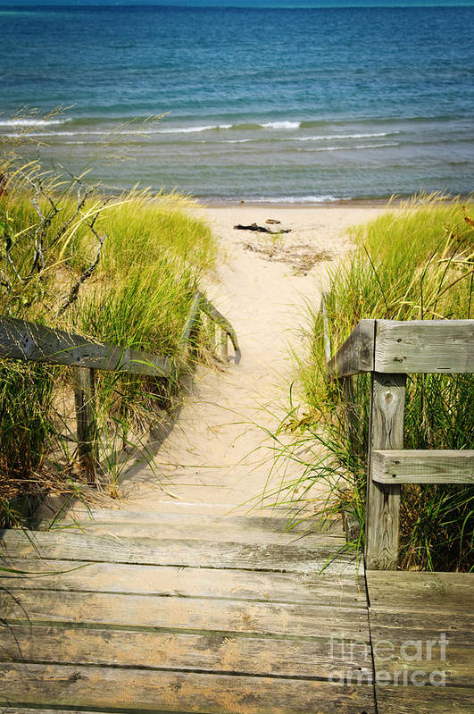 Beach Art Print featuring the photograph Wooden Stairs Over Dunes At Beach by Elena Elisseeva