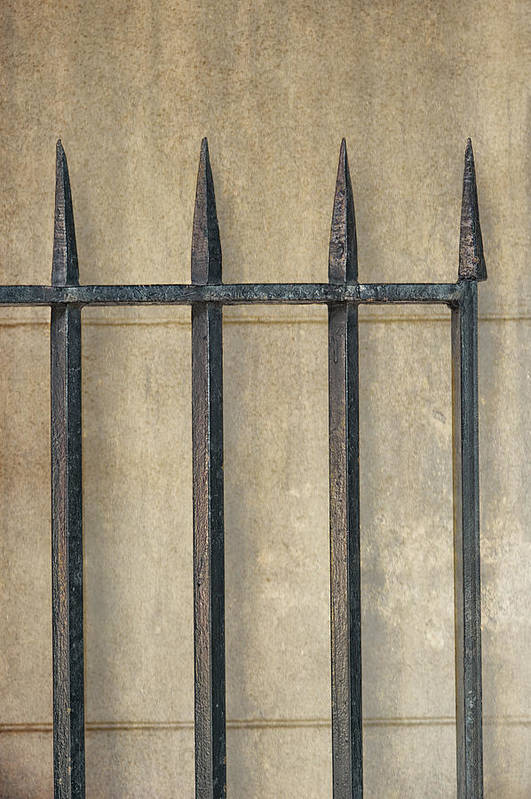 Gate Print featuring the photograph Wrought Iron Gate by Brenda Bryant
