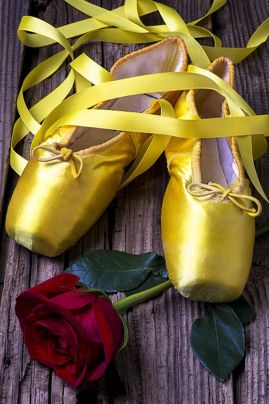 Ballet Shoes Shoe Art Print featuring the photograph Yellow Ballet Shoes by Garry Gay