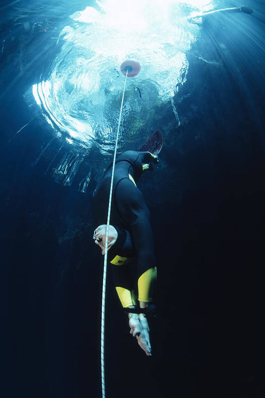Free-diving Art Print featuring the photograph Free-diver by Alexis Rosenfeld