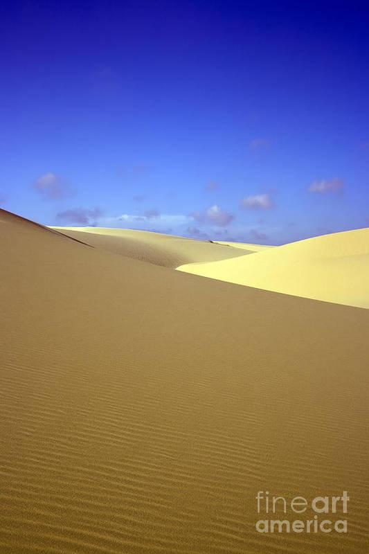 Texture Print featuring the photograph Desert by MotHaiBaPhoto Prints