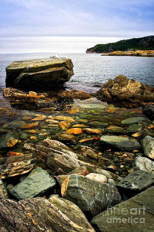 Coast Art Print featuring the photograph Atlantic Coast In Newfoundland by Elena Elisseeva