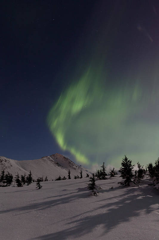 Alaska Art Print featuring the photograph A Wave Of Auroras by Tim Grams