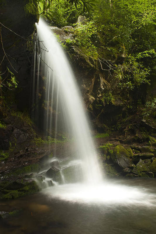 Grotto Falls Art Print featuring the photograph Alongside Grotto Falls by Andrew Soundarajan