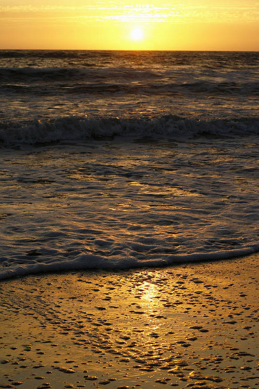 Pacific Ocean Art Print featuring the photograph August Sunset by Maureen Bates