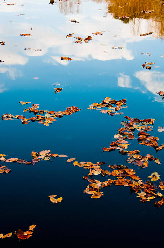 Autumn Art Print featuring the photograph Autumn - 3 by Okan YILMAZ