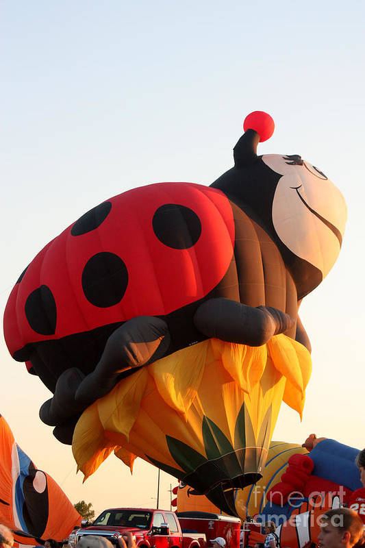 Hot Air Balloons Art Print featuring the photograph Balloon-ladybug-7616 by Gary Gingrich Galleries