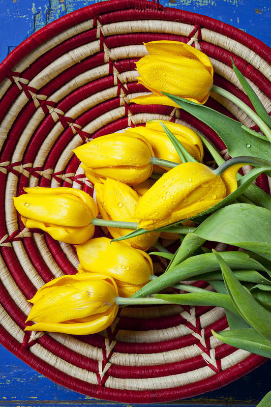 Basket Art Print featuring the photograph Basket Full Of Tulips by Garry Gay