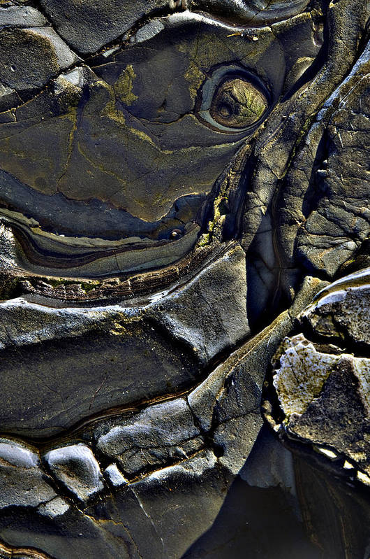 Beach Art Print featuring the photograph Beach Contours2 by Rob Outwater