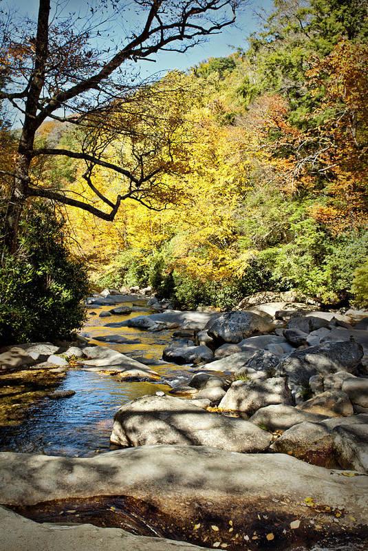 Smoky Mountains Art Print featuring the photograph Beautiful Fall Scene by Cheryl Davis