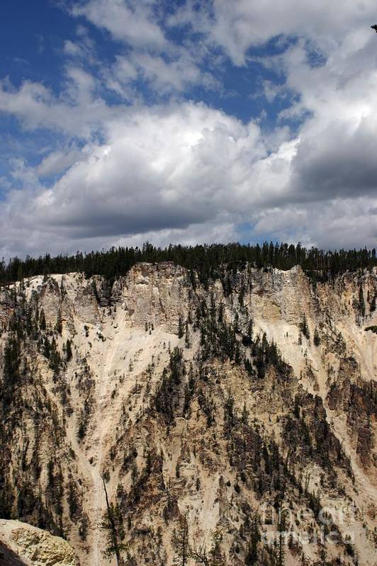 Grand Canyon Art Print featuring the photograph Blue Skies And Grand Canyon In Yellowstone by Living Color Photography Lorraine Lynch