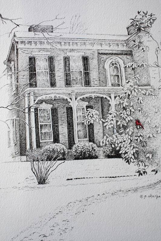 Historic Home Art Print featuring the drawing Cardinal by Patsy Sharpe