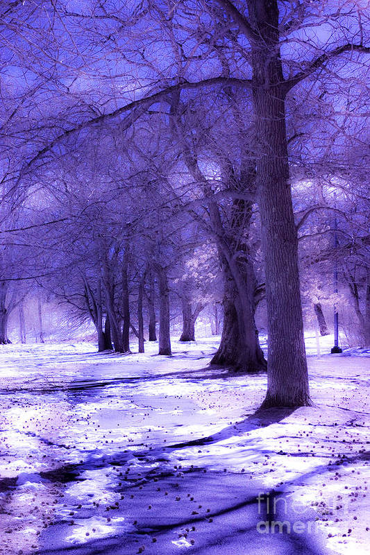 Digital Infrared Art Print featuring the photograph Color Infrared Winter Landscape by Angela Rose
