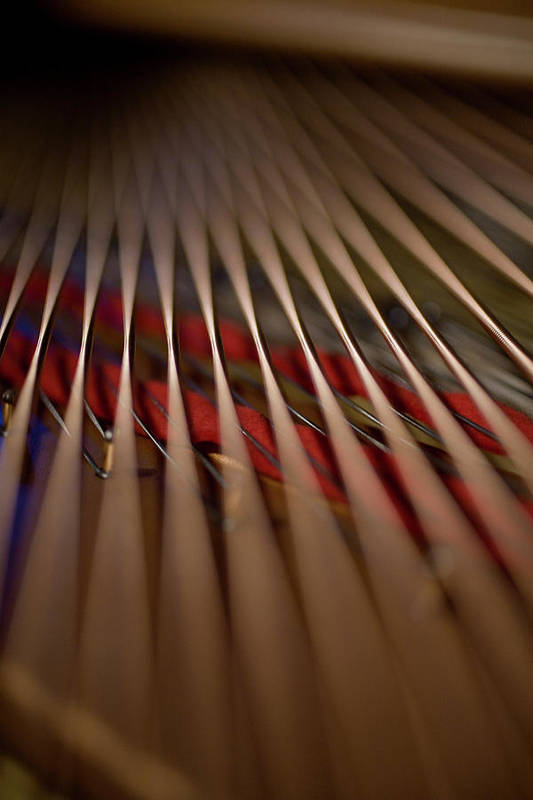 Vertical Art Print featuring the photograph Detail Of Piano Strings by Christopher Kontoes