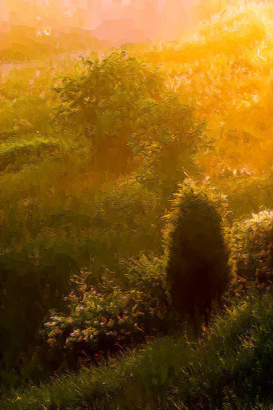Ron Jones Art Print featuring the photograph Early Gloaming by Ron Jones