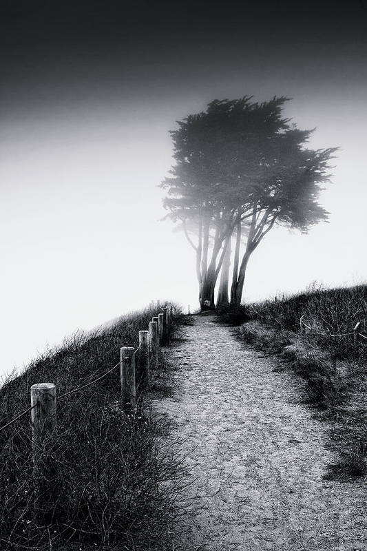 Road Art Print featuring the photograph End Of A Road by Laszlo Rekasi