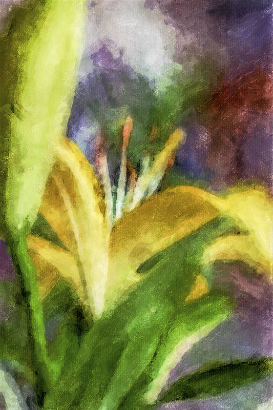 Digital Art Art Print featuring the digital art Exotic Lily In Oil by Jill Balsam