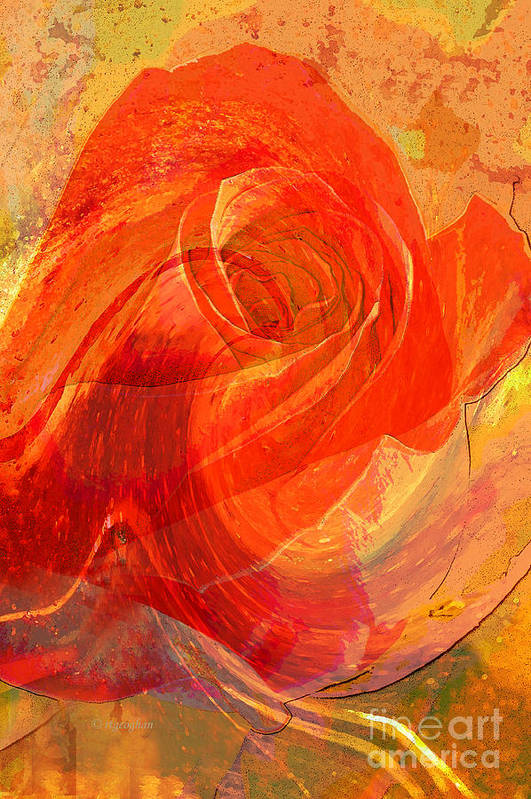 Rose Art Print featuring the photograph Fanciful Flowers - Rose by Regina Geoghan