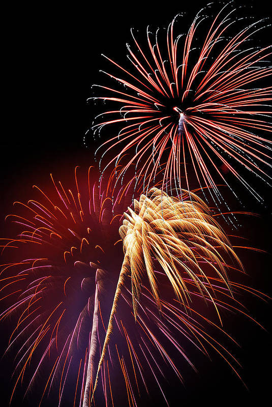 Fireworks Art Print featuring the photograph Fireworks Wixom 3 by Michael Peychich