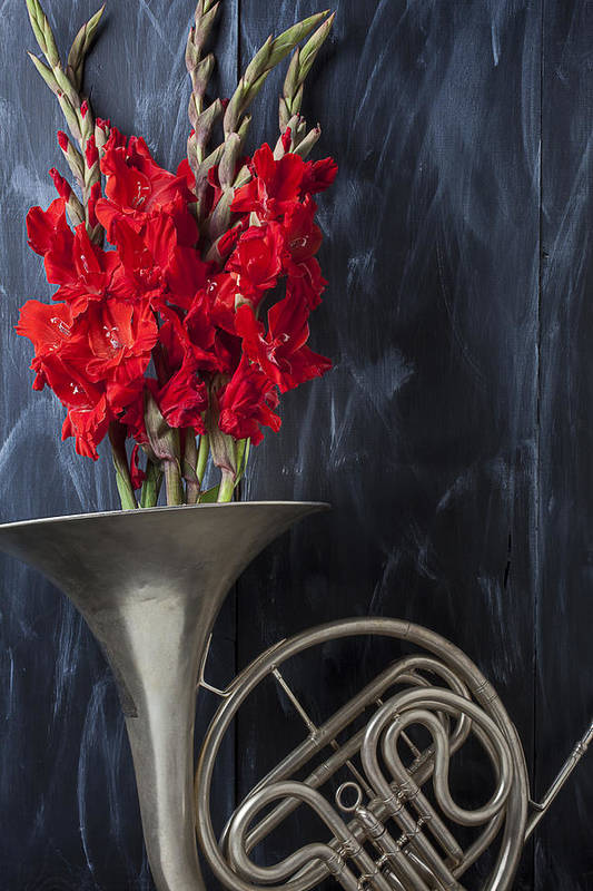French Horn Art Print featuring the photograph French Horn With Gladiolus by Garry Gay