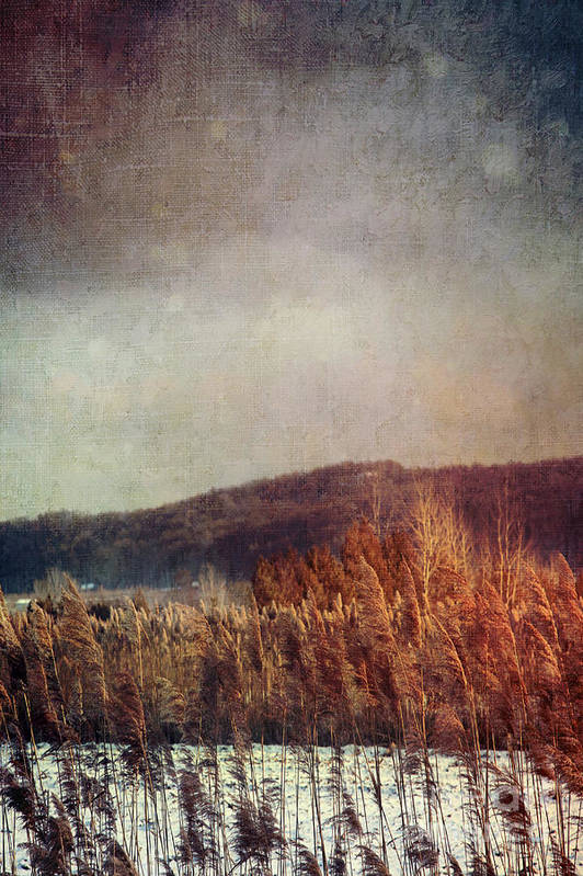 Abandoned Art Print featuring the photograph Frosty Field In Late Winter Afternoon by Sandra Cunningham