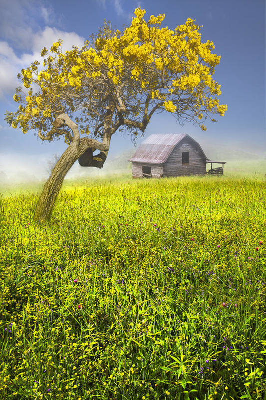 Appalachia Art Print featuring the photograph Good Morning Spring by Debra and Dave Vanderlaan