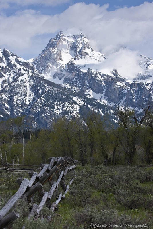 Grand Tetons Art Print featuring the photograph Grand Teton Fence by Charles Warren