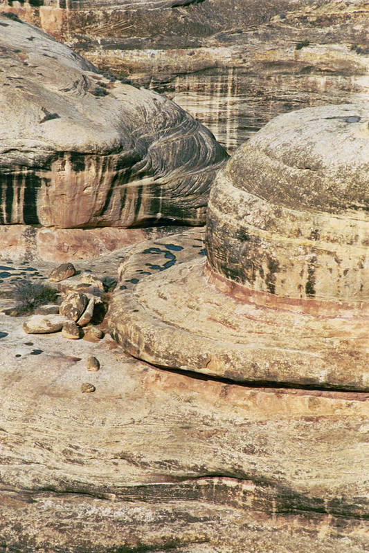 Hat Art Print featuring the photograph Hats Off To Utah by David Pike