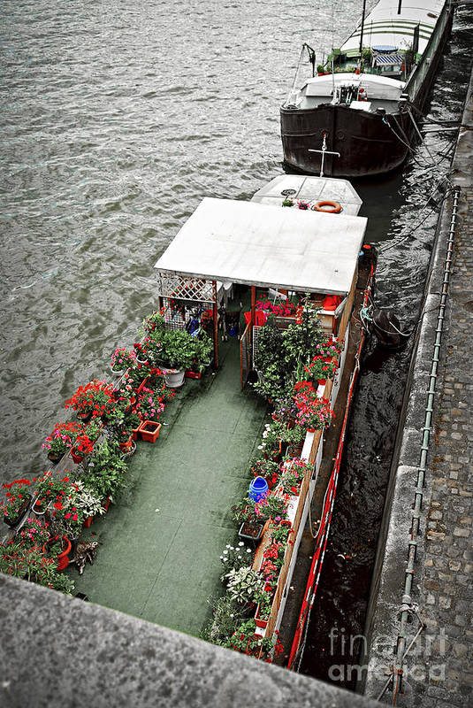 Boat Art Print featuring the photograph Houseboats In Paris by Elena Elisseeva