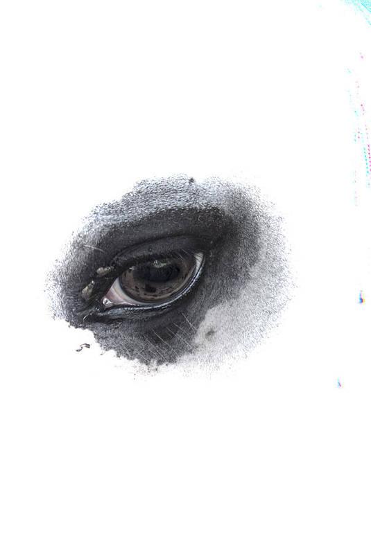 Eye Art Print featuring the photograph Indys Eye by Judy Hall-Folde