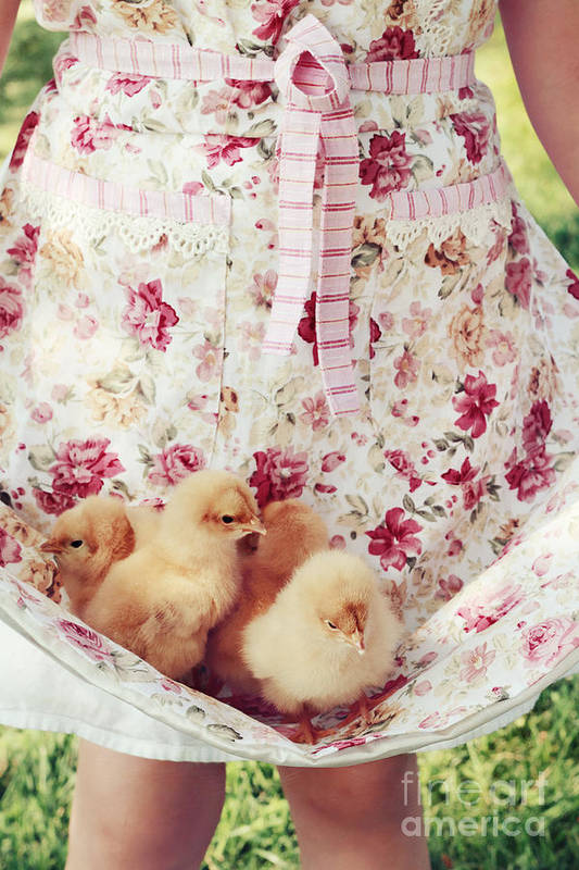 Chick Art Print featuring the photograph Little Chicks by Stephanie Frey