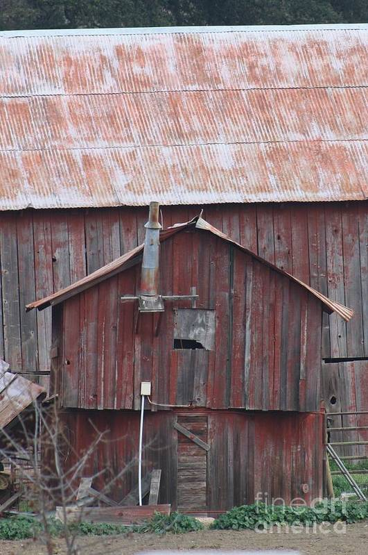 Barn Art Print featuring the photograph Little Red Barn by Susan Dinkins