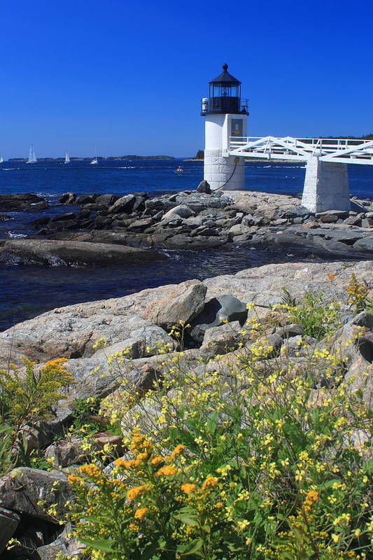 Maine Coast Art Print featuring the photograph Marshall Point Lighthouse Summer Flowers by John Burk