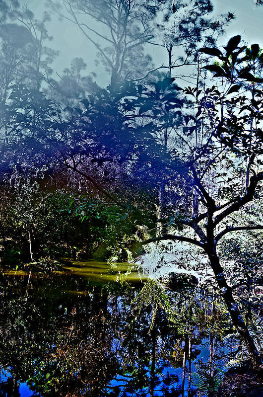 Parks Art Print featuring the photograph Morning Haze by Susi Perla